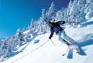 Book Now - Taxi Avoriaz